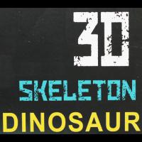 3D Skeleton Dinosaur